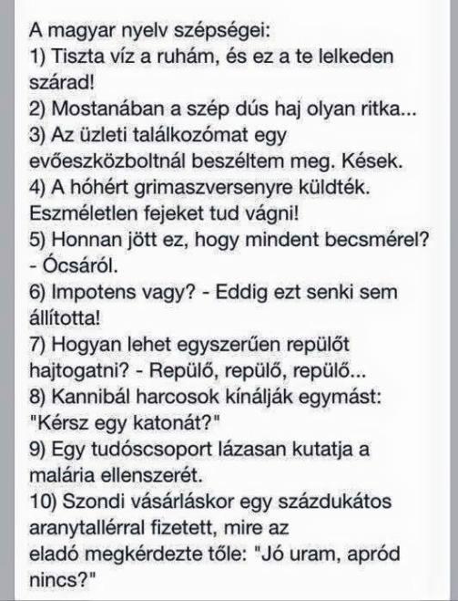 A magyar nyelv szepsegei