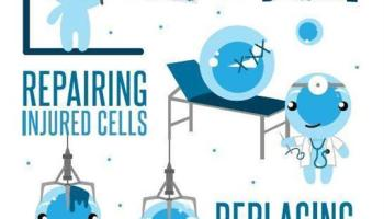 First experiences with the cell drink Asea